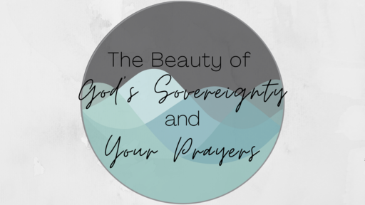 The Beauty of God's Sovereignty and Your Prayers