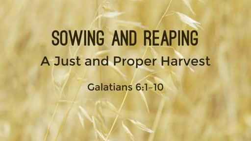 Sowing and Reaping - A Just and Proper Harvest