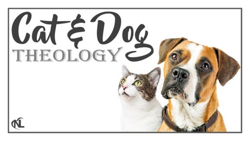 08.23.20   Cat & Dog Theology (Part 2)