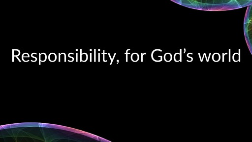 Responsibility, for God's world