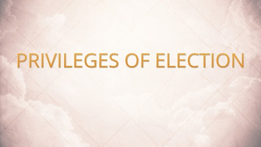 Privileges of election
