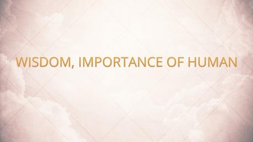 Wisdom, importance of human