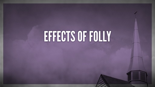 Effects of folly