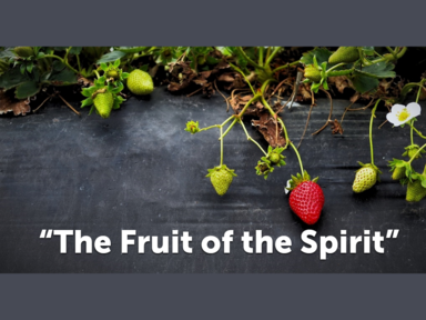 """""""The Fruit of the Spirit"""""""