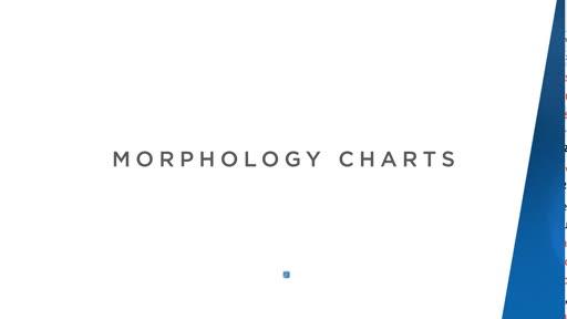 Morph Charts