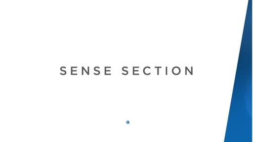 Sense Section