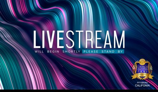 Today's Live Stream