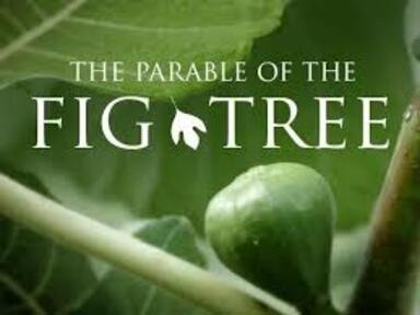 """""""The Parable of the Fig Tree"""""""