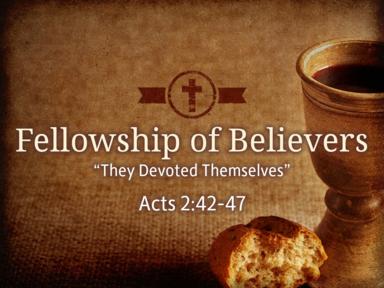 Fellowship of Believers