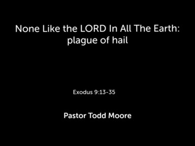 The LORD In Our Midst: plagues of flies, livestock, & boils