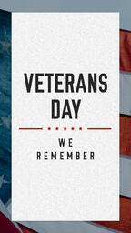 Veterans Day Social Shares  image 1