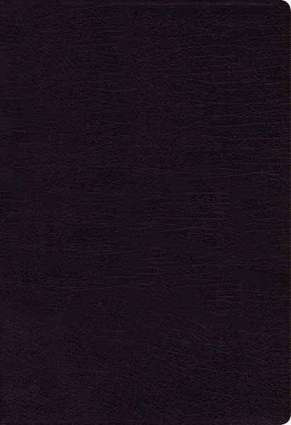 NIV Bonded Leather