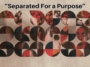 """""""Separated For a Purpose"""""""