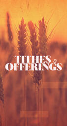 Tithes & Offering Wheat  PowerPoint image 8