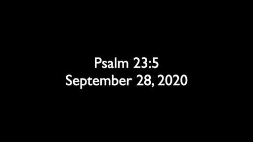 Psalm 23.5