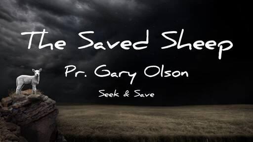 The Saved Sheep