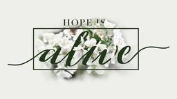 Hope is Alive  PowerPoint Photoshop image 1