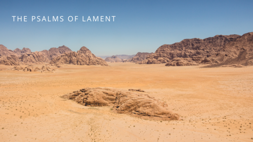 The Psalms of Lament