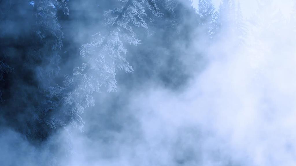 Forest Tundra sermon title 16x9 smart media preview