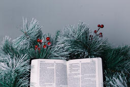 Bible Open to the Christmas Story with Greenery and Berries  image 1