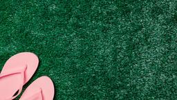 Pink Flip Flops on Grass  image 4