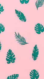 Tropical Leaves on Pink Background  image 14