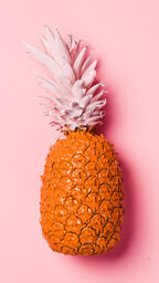 Colorful Pineapple on Pink Background  image 20