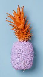 Colorful Pineapple on Blue Background  image 21