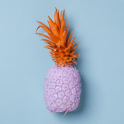 Colorful Pineapple on Blue Background  image 31