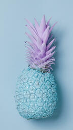 Colorful Pineapple on Blue Background  image 22