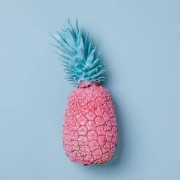 Colorful Pineapple on Blue Background  image 10
