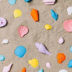 Painted Sea Shells on Sand  image 6