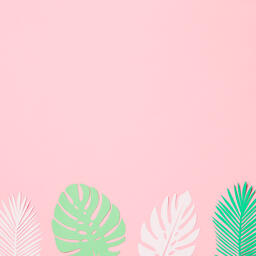Tropical Paper Leaves on Pink Background  image 12