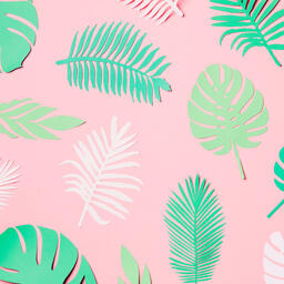 Tropical Paper Leaves on Pink Background  image 15
