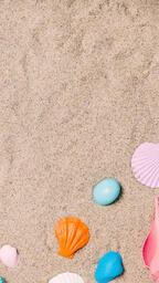 Painted Sea Shells on Sand  image 18