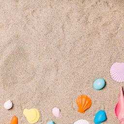Painted Sea Shells on Sand  image 5