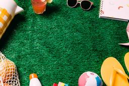Summer Supplies on Grass  image 4