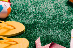 Summer Supplies on Grass  image 5