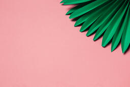 Green Palms on Pink Background  image 1
