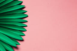 Green Palms on Pink Background  image 7