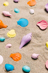 Painted Sea Shells on Sand  image 9