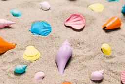 Painted Sea Shells on Sand  image 17