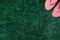 Pink Flip Flops on Grass  image 8