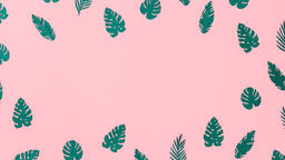 Tropical Leaves on Pink Background  image 10