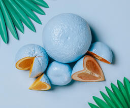 Blue Citrus on Blue Background with Palm Leaves  image 2