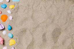 Painted Sea Shells on Sand  image 13