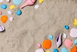 Painted Sea Shells on Sand  image 15