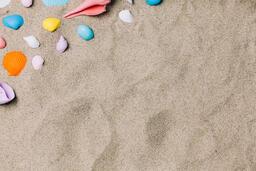 Painted Sea Shells on Sand  image 16
