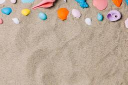 Painted Sea Shells on Sand  image 10