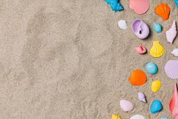 Painted Sea Shells on Sand  image 19